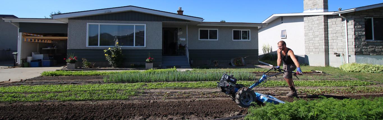 Home The Urban Farmer